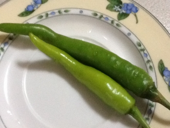 Green chili peppers/siling haba